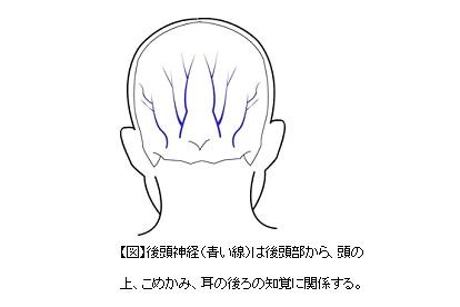 後頭 神経痛 治し 方